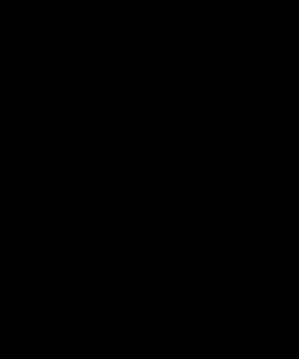 Het icoontje van de Robokat mascotte, outline.